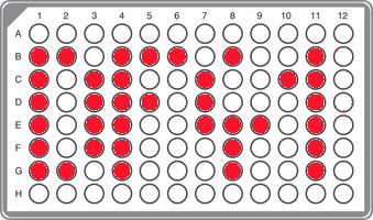 R1b-DF41 Panel (including Royal Stewart clades)
