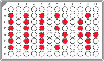 R1b-FGC11134 Panel (including CTS4466)