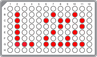 I1-L22 (including P109) Panel