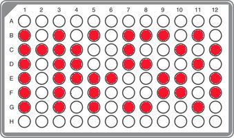 R1a-M458 Panel, YSEQ DNA Shop