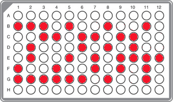 R1a-Z284 Panel