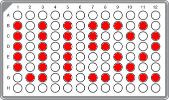 R1b-U152 Superclade Panel