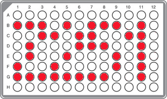 R1b-Z251 Panel (including 251-11EE subclades)